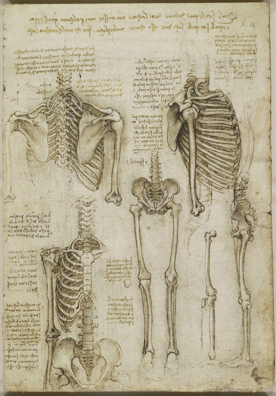 Anatomía de un genio total | Cultura | EL PAÍS