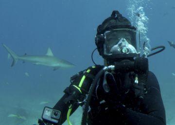 Entre tiburones hambrientos en el triángulo de las Bermudas