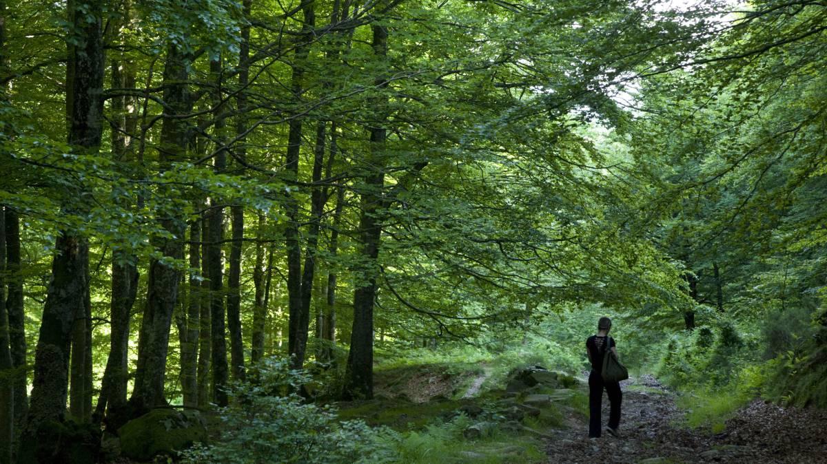 Las hondas historias de vivos y muertos en el País Vasco de Atxaga
