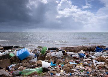 ¿Cómo cuidar el mar desde dentro?