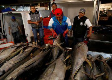 México pierde la ?guerra del atún? con EE UU