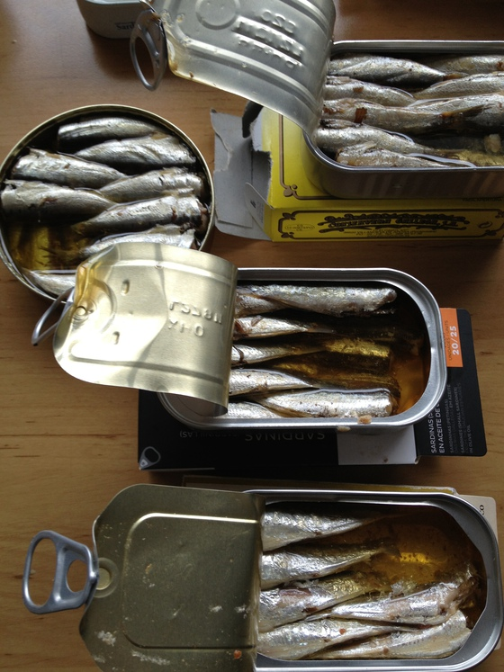 sardinas en lata en el embarazo