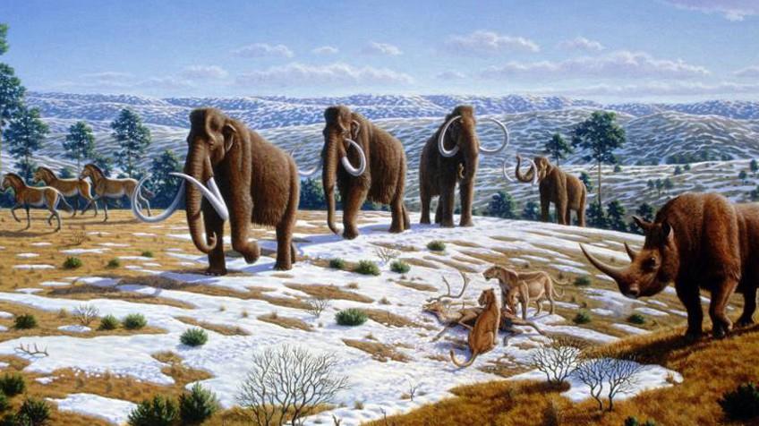 Resultado de imagen de Una reconstrucción del clima de los dos últimos millones de años