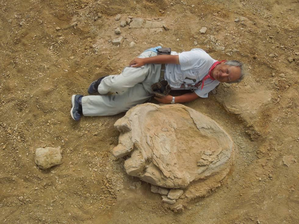 Encontrada Una De Las Huellas De Dinosaurio Mas Grandes Del Mundo Ciencia El Pais Si hoy en día tenemos conocimiento de la existencia de los dinosaurios, en gran medida es gracias a los varios e interesantes hallazgos que se han ido realizando a lo largo de la historia en todo el planeta. las huellas de dinosaurio