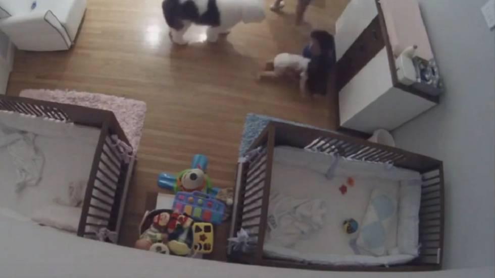 Vídeo: Un niño de nueve años salva a su hermano de 11 meses ...