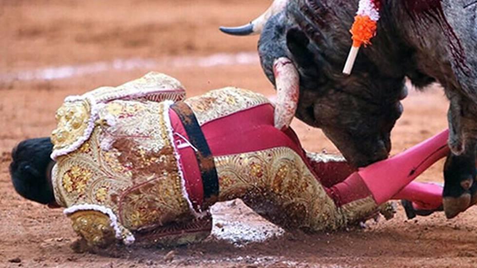 Vídeo: Un torero mexicano sufre una grave cornada que le destroza el ...