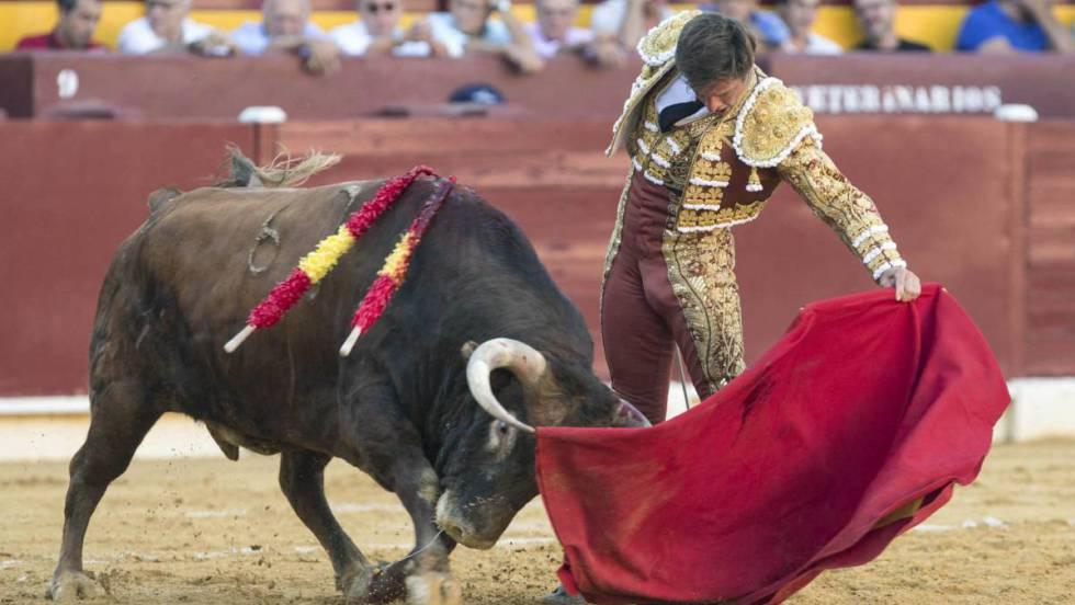 Toros Se Deben Prohibir Los Toros Opinión El País