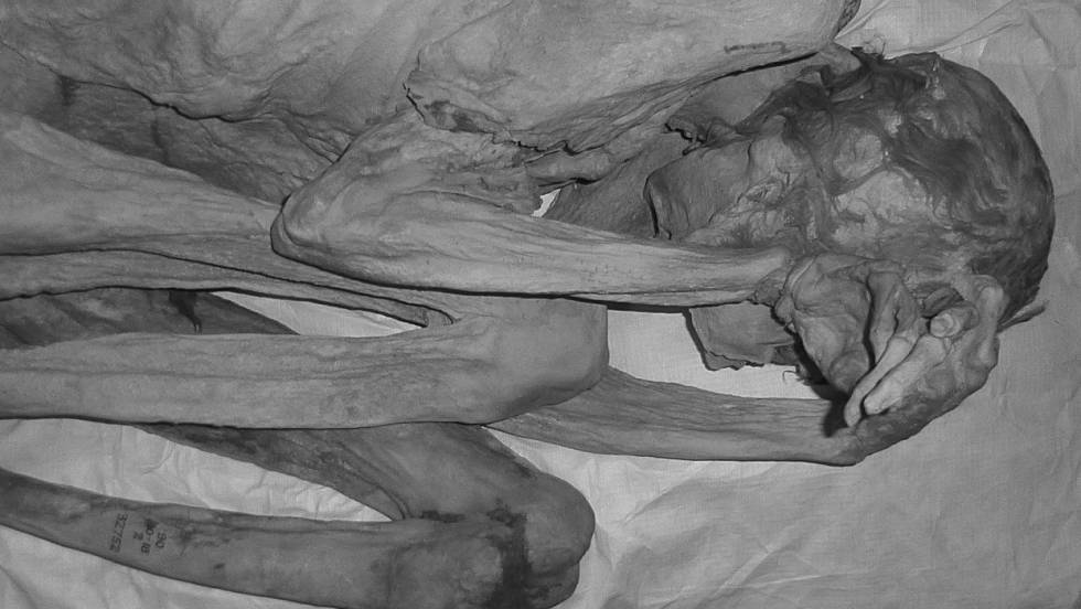 Descubren Los Tatuajes Figurativos Más Antiguos En Dos Momias Del