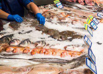 Anisakis: ¿han cambiado las recomendaciones sobre la congelación del pescado?