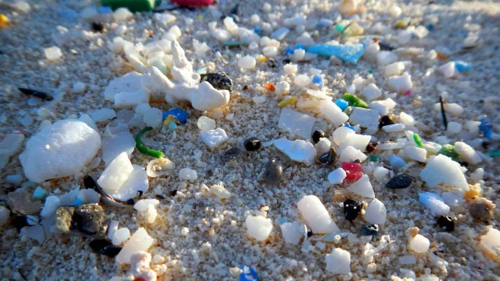 Los microplásticos ya han llegado al intestino humano | Ciencia ...