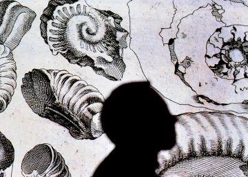 Y tú, Leonardo, ¿eres de ciencias o de letras?