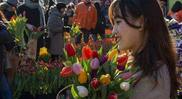 ¿De dónde salen los colores de las flores?