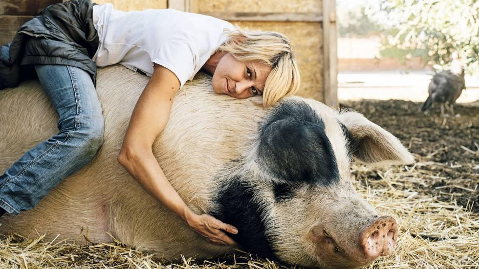 comida vegana para llevar murcia