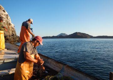¿Pescado de comercio justo?