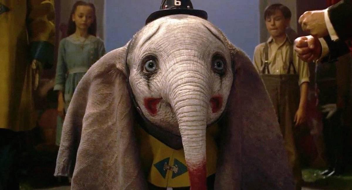 A dolorosa vida e a enigmática morte do verdadeiro Dumbo, o elefante triste