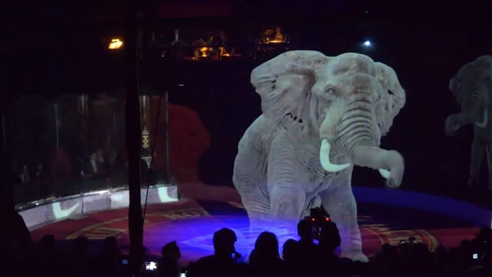 Video Hologramas Para Sustituir A Los Animales De Los