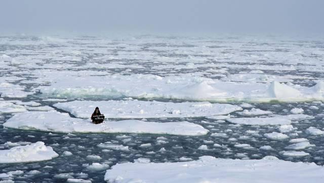 El deshielo provocado por el calentamiento global aumenta el calentamiento global