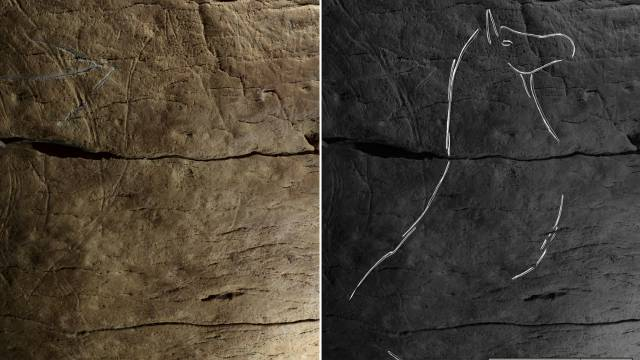 Grabados de bisontes en cuevas españolas revelan una cultura artística común en la antigua Europa