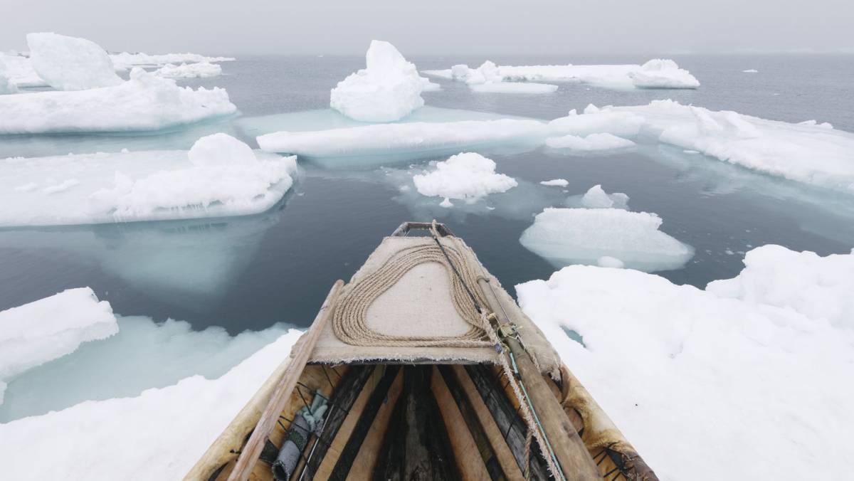 El final de la era del hielo
