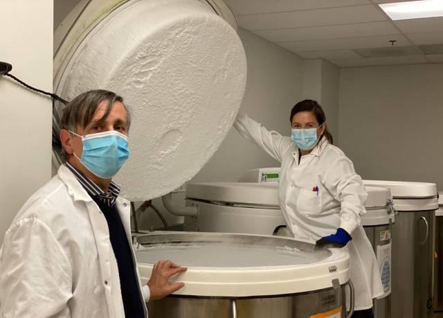 El mayor estudio hasta la fecha sugiere que las defensas contra el coronavirus pueden durar años
