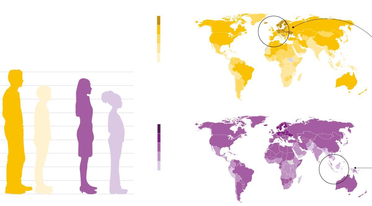 ¿Cuánto hemos crecido? La mala nutrición genera una brecha de hasta 20 centímetros de altura entre países