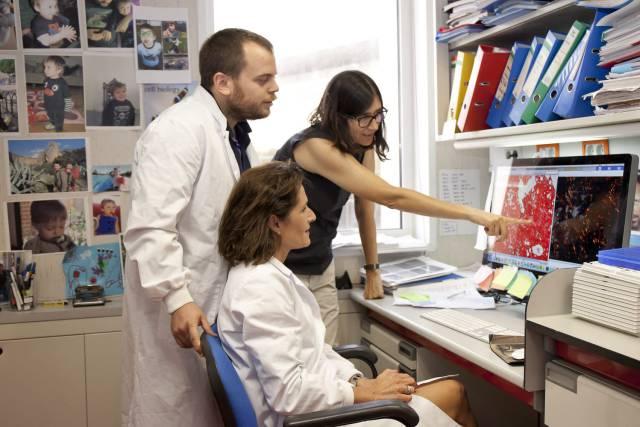 En busca de una terapia para curar la fibrosis pulmonar causada por la covid