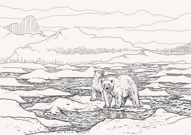 El día que nos pudo comer un oso polar en el Ártico