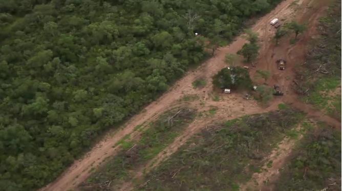 Resultado de imagen para El mortífero avance de la frontera agrícola argentina