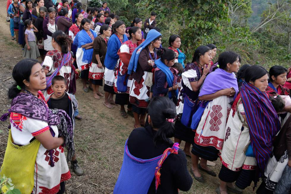 Advierten ONG riesgo de hambruna entre tzotziles por desplazamientos en Chiapas