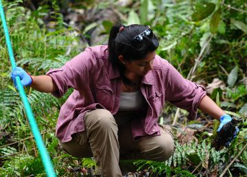 Nuevo revés para Ecuador en el caso contra Chevron por contaminación