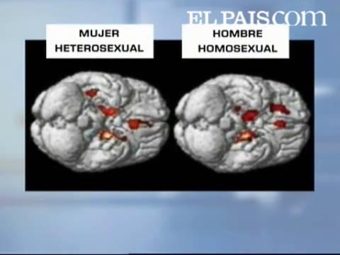 Heterosexual homosexual que son